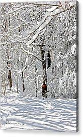 Snow Walking Acrylic Print by Denise Romano