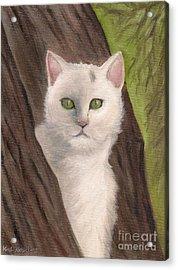 Snow White The Cat Acrylic Print by Kostas Koutsoukanidis