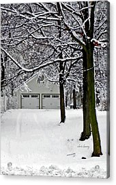 Snowed In Acrylic Print by Chris Berry