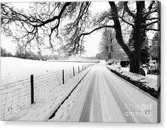 Snowy Lane Acrylic Print by Adrian Evans