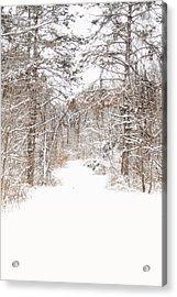 Snowy Path Acrylic Print by Mary Timman