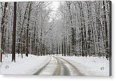 Snowy Road In Oak Openings 7058 Acrylic Print by Jack Schultz