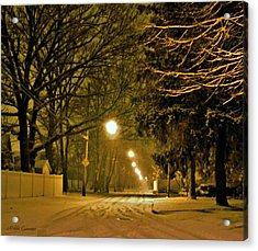 Snowy Winter Night Acrylic Print by Mikki Cucuzzo