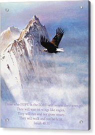 Soaring Wings Acrylic Print by Robert Foster