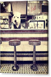 Soda Jerk Acrylic Print by Edward Fielding