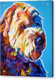 Soft Coated Wheaten Terrier - Max Acrylic Print by Alicia VanNoy Call