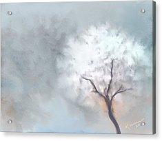 Soft Dream Acrylic Print by Kume Bryant