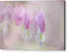 Soft Pink Heart Acrylic Print by Jeff Swanson