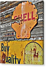Soft Shell Acrylic Print by Lee Craig
