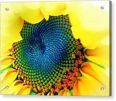 Solar Energy Acrylic Print by Marianna Mills