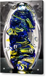 Solid Glass Sculpture -13e4- Cobalt And Yellow  Acrylic Print by David Patterson