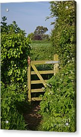 Somerset Countryside Gate Uk Acrylic Print by Rene Triay Photography