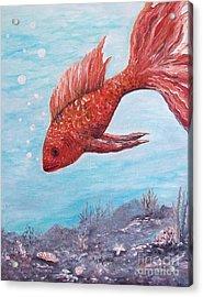 Something Is Fishy Acrylic Print by Rhonda Lee