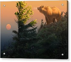 Something On The Air - Grizzly Acrylic Print by Aaron Blaise