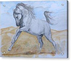 Son Of The Desert Acrylic Print by Janina  Suuronen