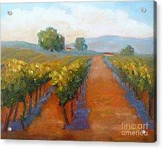 Sonoma Vineyard Acrylic Print by Carolyn Jarvis