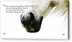 Soul Touch - Emotive Horse Art By Sharon Cummings Acrylic Print by Sharon Cummings