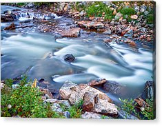 South Boulder Creek Little Waterfalls Rollinsville Acrylic Print by James BO  Insogna