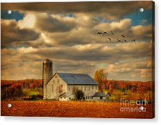South For The Winter Acrylic Print by Lois Bryan