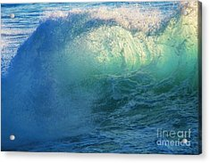 Southern Curl Acrylic Print by Marco Crupi