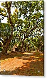 Southern Lane Paint Filter Acrylic Print by Steve Harrington