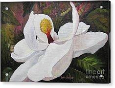 Southern Magnolia Acrylic Print by Barbara Haviland