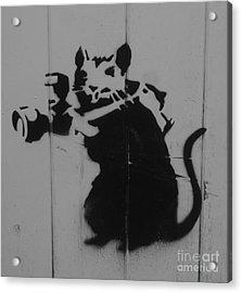 Southport Mouse Acrylic Print by C Lythgo