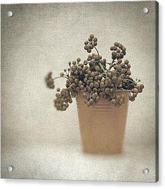 Souvenirs De Demain Acrylic Print by Taylan Apukovska