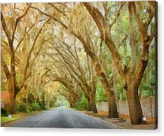 Spanish Moss - Symbol Of The South Acrylic Print by Christine Till
