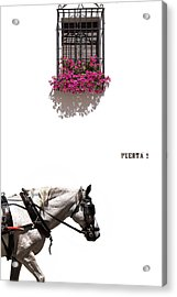 Spanish Scene Acrylic Print by Mal Bray