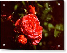 Sparkling Acrylic Print by George Tuffy