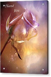 Sparkling Rose Thank You Acrylic Print by Anne Macdonald