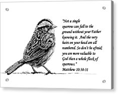 Sparrow Drawing With Scripture Acrylic Print by Janet King