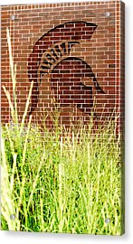 Sparty On The Wall Acrylic Print by John McGraw