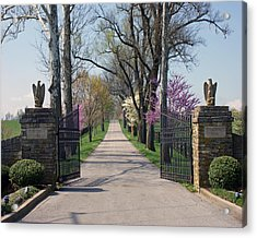 Spendthrift Farm Entrance Acrylic Print by Roger Potts