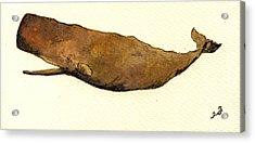 Sperm Whale Acrylic Print by Juan  Bosco