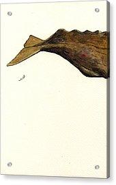 Sperm Whale Third Part Acrylic Print by Juan  Bosco