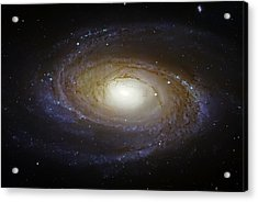 Spiral Galaxy M81 Acrylic Print by The  Vault - Jennifer Rondinelli Reilly
