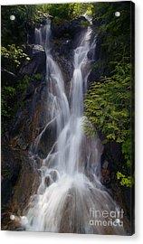 Split Top Falls Acrylic Print by Mike  Dawson