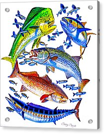 Sportfish Collage Acrylic Print by Carey Chen
