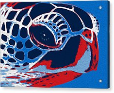 Spot Acrylic Print by Jack Zulli