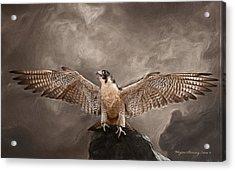 Spread Your Wings Acrylic Print by Wayne Bonney