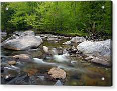 Spring Along The North Fork Acrylic Print by Panoramic Images