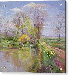 Spring Bridge Acrylic Print by Timothy  Easton