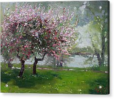 Spring By The River Acrylic Print by Ylli Haruni