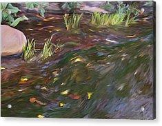 Spring Creek In Oak Canyon Park Acrylic Print by Angela A Stanton