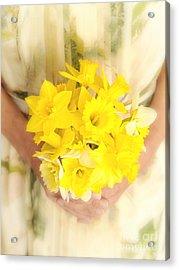 Spring Daffodils Acrylic Print by Edward Fielding
