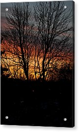 Spring Dawn Acrylic Print by Frederico Borges