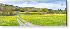 Spring Farm Landscape With Dirt Road And Dandelions Maine Acrylic Print by Keith Webber Jr