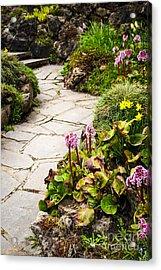 Spring Garden Acrylic Print by Elena Elisseeva